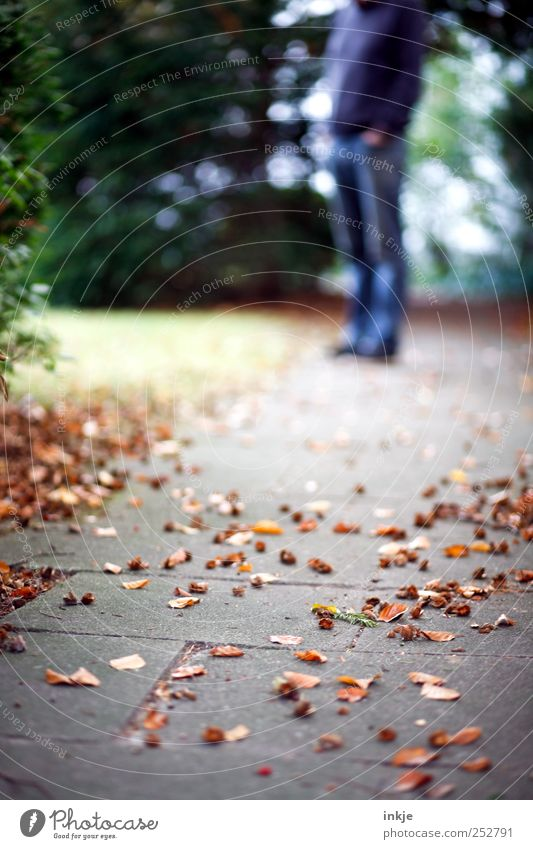 The man who always waits for the woman with the camera. Leisure and hobbies To go for a walk Promenade Trip Human being Adults Life 1 Nature Autumn Grass Bushes