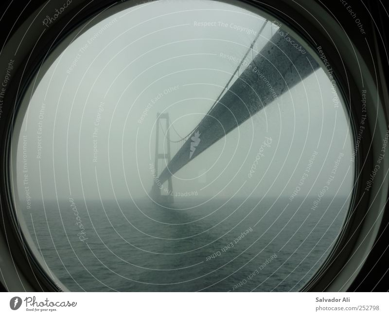 Lazin on a foggy afternoon Bridge Traffic infrastructure Cruise liner Porthole Long Gloomy Gray Esthetic Oeresund bridge color line Fog Suspension bridge