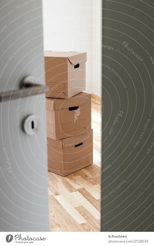 We are moving Moving (to change residence) Interior design Room Office Business Packaging Package Box Work and employment Curiosity Thrifty Change Cardboard