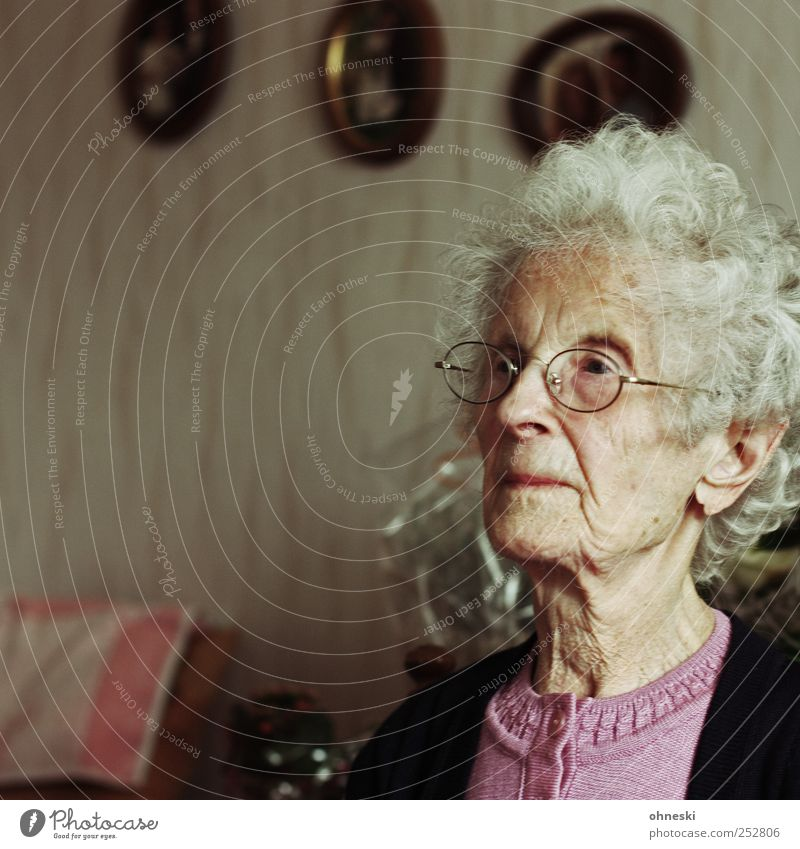 Sundays Living room Human being Female senior Woman Grandmother Senior citizen Head 1 60 years and older Old Humble Concern Fatigue Loneliness Life Feeble