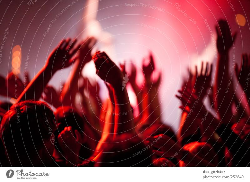 Hand Red Joy Emotions Party Moody Jump Wild Music Arm Dance Joie de vivre (Vitality) Culture Youth culture Longing Event