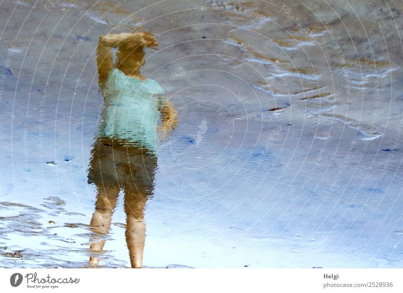 Mirror image of a woman standing in the mudflats and looking up Human being Feminine Woman Adults 1 30 - 45 years Environment Nature Water Summer