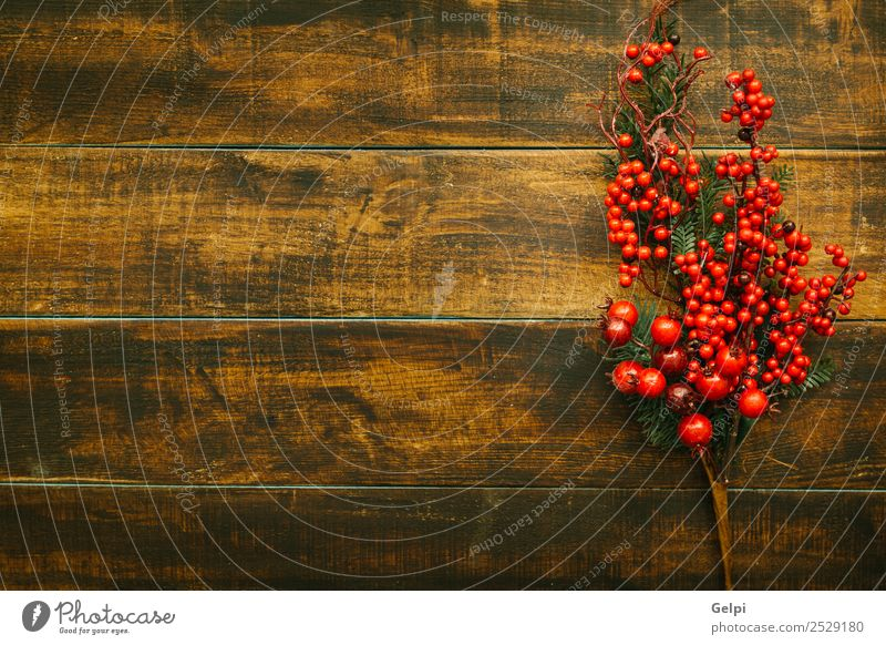 Christmas branch with red fruits on a wooden background Nature Christmas & Advent Plant Colour Green White Tree Red Leaf Winter Wood Feasts & Celebrations