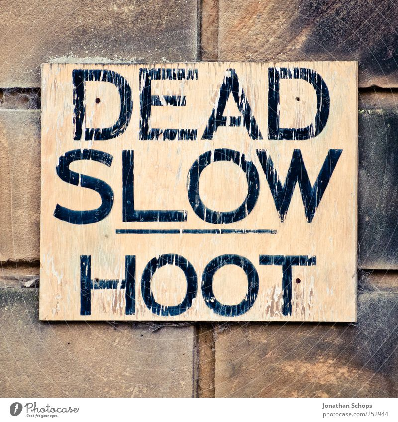 DEAD SLOW HOOT Art Whimsical Wall (barrier) Signs and labeling Clue Signage Wood Stone Direct Typography Characters Warn Warning sign Flake off Capital letter