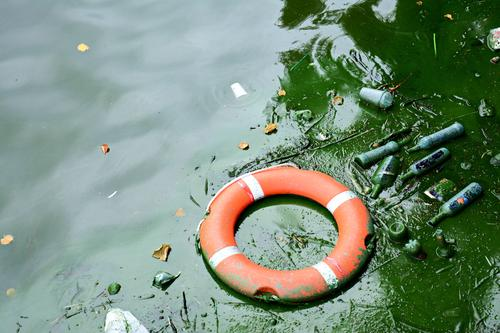 Town Environment Lake Dirty Glass Plastic Decline Stress Trash Environmental protection Bottle Pond Disgust Plastic packaging Tin Environmental pollution