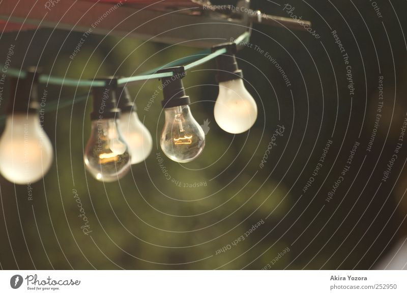 Double vision Cable Electric bulb Technology Energy industry Illuminate Old Bright Retro Yellow Green Red White Colour photo Exterior shot Detail Deserted