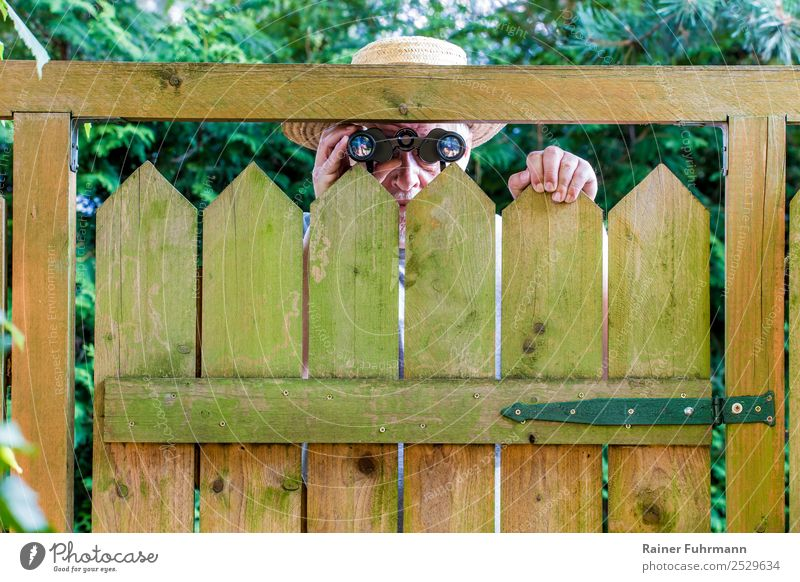A nosy neighbor peers over a garden fence. Looking through binoculars. Human being Masculine Man Adults Male senior Head 1 60 years and older Senior citizen