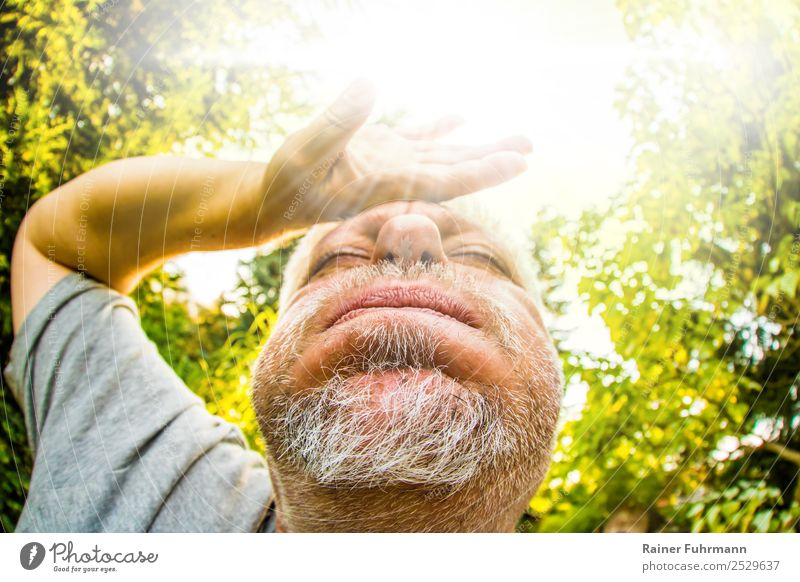 Portrait of a man, he sweats in great summer heat Human being Masculine Man Adults Male senior 1 Sun Sunlight Climate Climate change Weather Warmth Garden Park