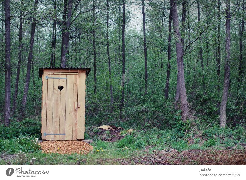 quiet place Environment Nature Plant Forest Simple Toilet toilet house Latrine Hut Heart Wood Loneliness Wilderness free landscape Green Brown Rental toilet