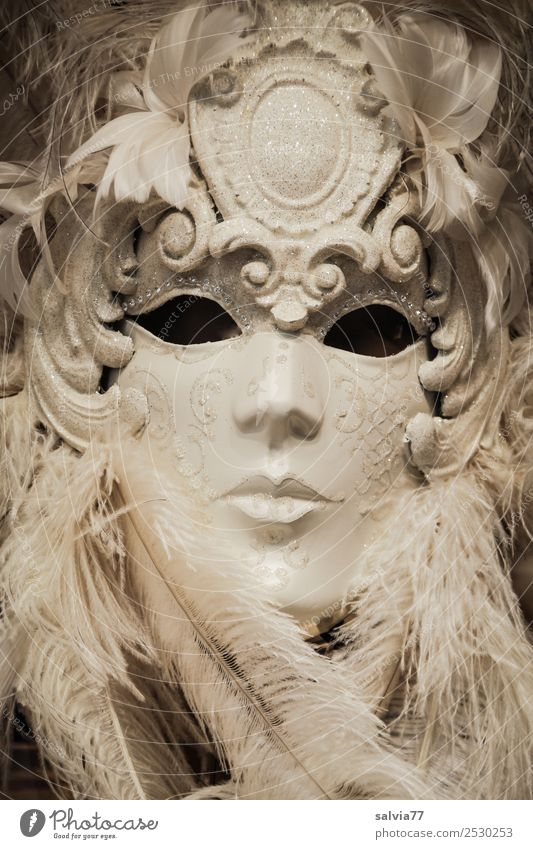 Emotion hidden Face Mask Black White Carneval masque Metal coil Feather headdress Looking Empty Expressionless Gaze Hide Venice Carnival Black & white photo