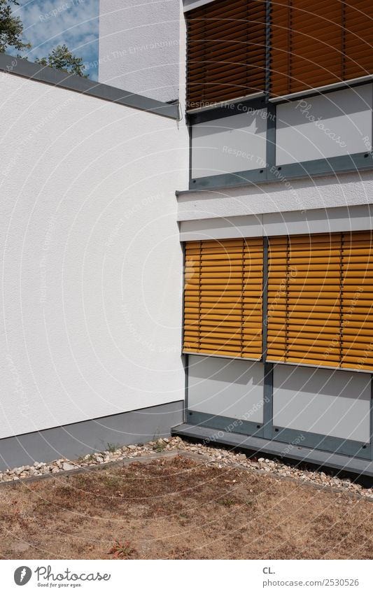 yellow blinds, brown lawn Office Summer Warmth Drought Grass Deserted House (Residential Structure) Building Architecture Wall (barrier) Wall (building) Window