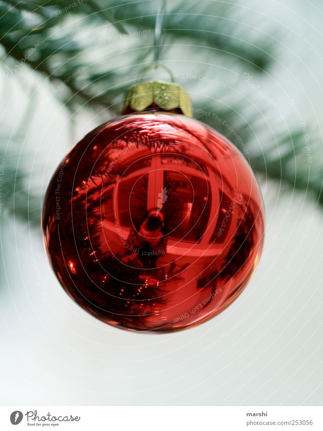 Christmas ball with character Leisure and hobbies Human being 1 Red Round Reflection Christmas & Advent Sphere Fir branch Anticipation Take a photo Glitter Ball