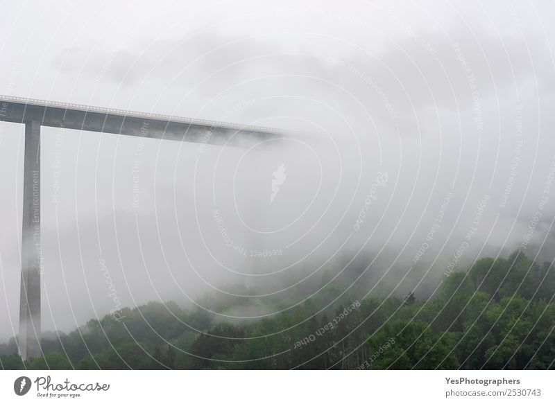 High modern bridge vanishing into mist and clouds Technology Nature Landscape Clouds Bad weather Fog Forest Hill Bridge Manmade structures Architecture