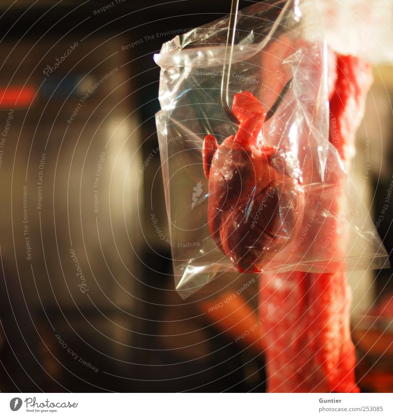 The crux of love Food Meat Red Killing Heart Butcher End Death Colour photo Multicoloured Interior shot Deserted Copy Space left Artificial light Light Contrast