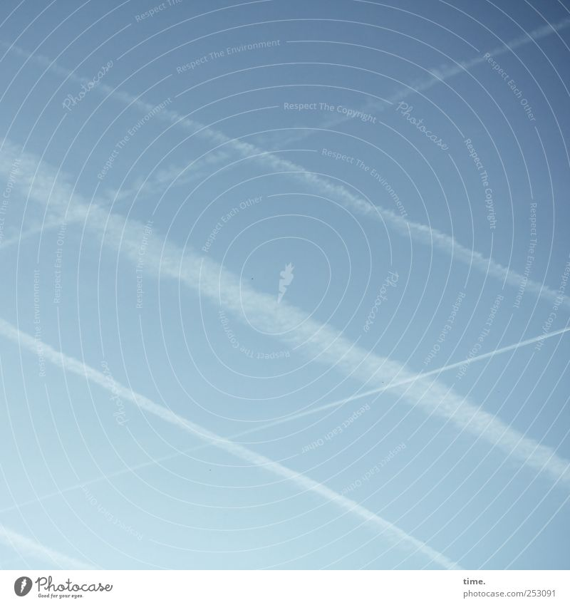 Sky over Frankfurt Contentment Aviation Environment Air Wind Crucifix Blue White Symmetry Vapor trail Blown away crosswise Balance Colour photo Subdued colour