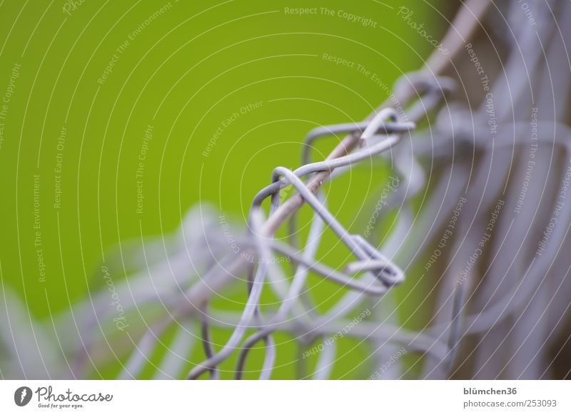 Green Gray Metal Safety Network To hold on Protection Fence Border Chaos Attachment Divide Barrier Wire Sharp-edged Knot