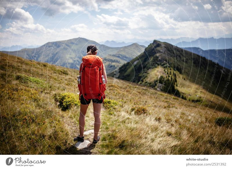 the way is the goal. Relaxation Summer Summer vacation Mountain Hiking Woman Adults Environment Nature Alps Fitness Mountaineering health sports Sports Athletic