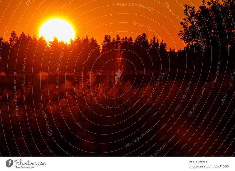 Sunset over forest Beautiful Vacation & Travel Tourism Trip Summer Mountain Nature Landscape Sky Horizon Autumn Tree Park Forest Street Lanes & trails Bright