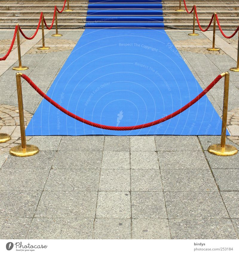 Blue Red Style Art Elegant Wait Gold Success Esthetic Lifestyle Culture Shows Clean Luxury Fence Entrance