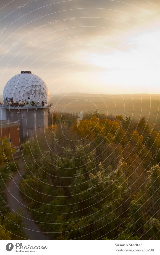 Tree Clouds Forest Autumn Berlin Landscape Above Illuminate Sphere Listening Historic Virgin forest Beautiful weather Autumnal Impressive Astronomy