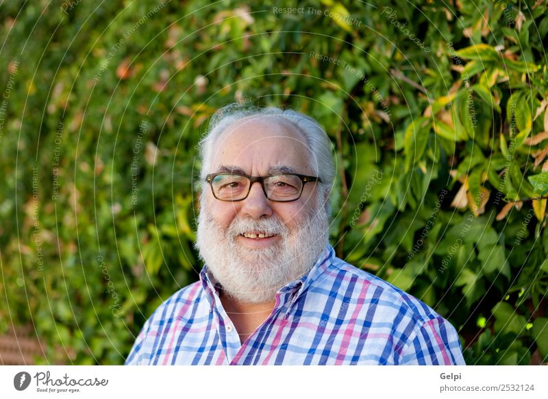 Portrait of senior man with white beard in the garden Lifestyle Happy Face Calm Leisure and hobbies Summer Garden Retirement Human being Man Adults Grandfather
