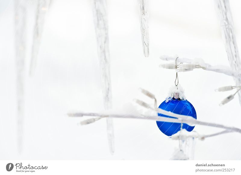 Christmas postcard Decoration Winter Ice Frost Snow Sphere Bright Blue White Christmas & Advent Christmas decoration Glitter Ball Icicle Copy Space left
