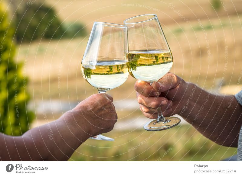 White wine in a garden with wine glasses Woman Nature Summer Hand Lifestyle Adults Love Style Garden Couple Feasts & Celebrations Friendship Leisure and hobbies