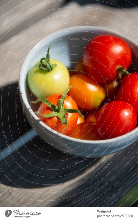 tomato dream Food Vegetable Nutrition Dinner Organic produce Vegetarian diet Life Growth Red Tomato Delicious Cooking Ingredients Summer Harvest Mature