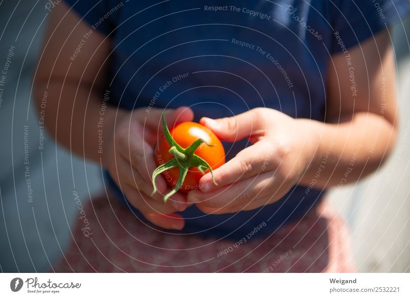 Child Human being Summer Hand Eating Healthy Food Happy Fresh Infancy Happiness Cooking Friendliness Delicious Vegetable Toddler