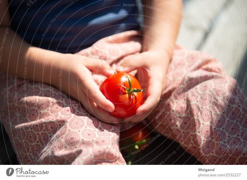 tomato happiness Food Vegetable Eating Lunch Well-being Baby Toddler Infancy 1 Human being 1 - 3 years 3 - 8 years Child Relaxation To enjoy Red Acceptance