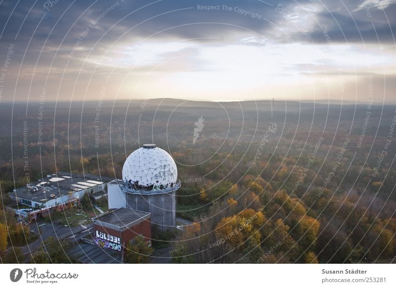 Nature Clouds Forest Autumn Berlin Architecture Going Fog Esthetic Sphere Beautiful weather Uninhabited Remote Autumnal Autumnal colours