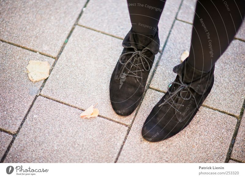 stop Lifestyle Elegant Beautiful Leisure and hobbies Human being Feet 1 Fashion Footwear Stand Wait Esthetic Hip & trendy Street Paving stone Leaf Colour photo