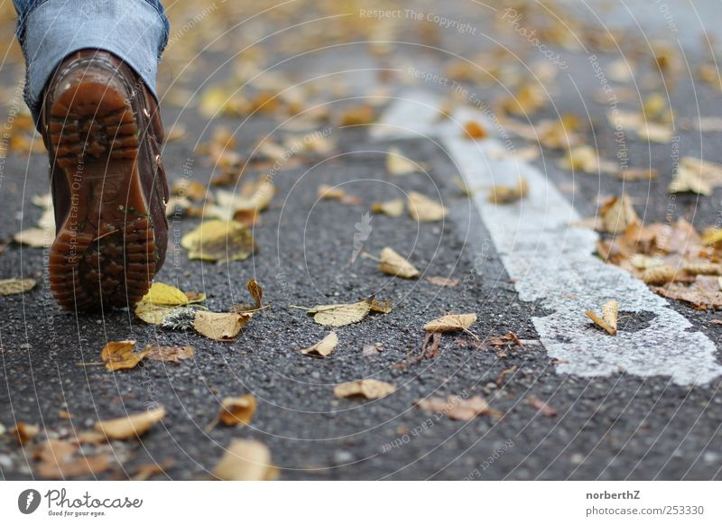 foot street autumn arrow Feet 1 Human being Autumn Leaf Street Arrow Walking Colour photo Subdued colour Exterior shot Detail Copy Space right Day Light Shadow