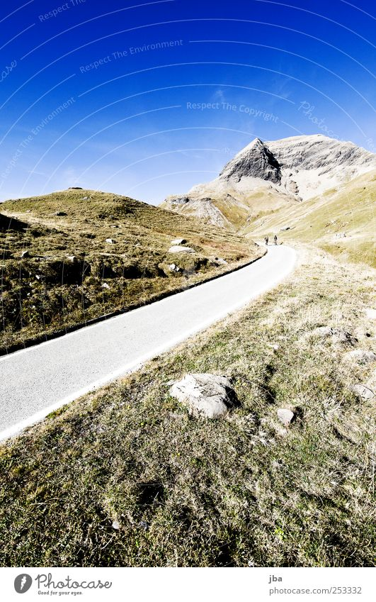 Nature Summer Street Landscape Life Meadow Autumn Mountain Freedom Movement Grass Stone Rock Tall Trip