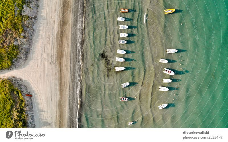 boats Leisure and hobbies Vacation & Travel Summer Summer vacation Navigation Boating trip Sport boats Motorboat Relaxation Beautiful Joie de vivre (Vitality)