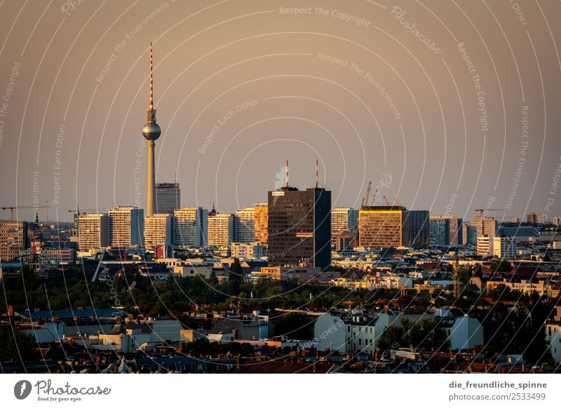 Skyline Alexanderplatz High-rise Prefab construction Berlin Downtown Berlin Germany Europe Capital city Tourist Attraction Landmark Television tower Town
