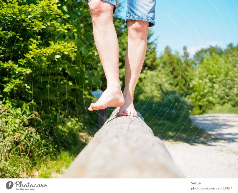 Human being Vacation & Travel Man Summer Joy Lifestyle Adults Legs Wood Movement Trip Leisure and hobbies Masculine 45 - 60 years Joie de vivre (Vitality)