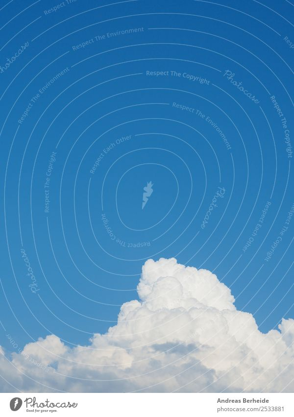 White clouds, blue sky Life Summer Environment Nature Sky Clouds Climate Weather Beautiful weather Power Energy Peace Pure big white Background picture beauty