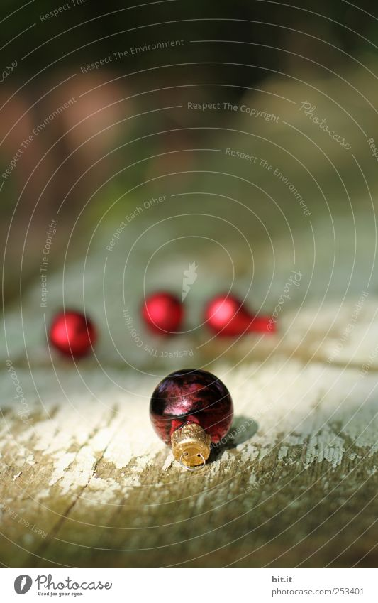 Ball bearing II Living or residing Flat (apartment) Decoration Feasts & Celebrations Nature Winter Beautiful weather Glittering Old Dark Small Round Red