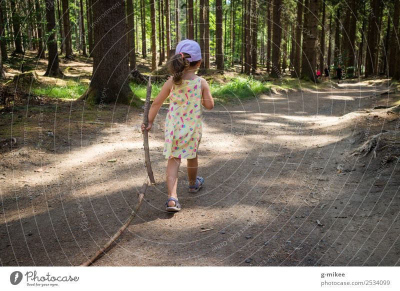 Walking Nature Summer Forest Discover Hiking Small Curiosity Green Power Willpower Girl hiking trail Life Strong Brave Colour photo Exterior shot