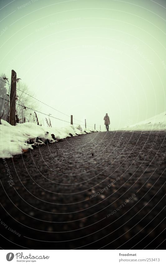 Human being Nature Winter Cold Snow Lanes & trails Fog Hiking Gloomy To go for a walk Asphalt Footpath Fence Freeze Pedestrian Bad weather