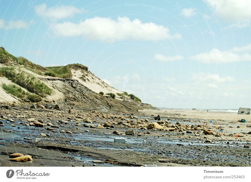 Dune with moraine Vacation & Travel Trip Summer Beach Ocean Environment Nature Landscape Elements Sand Water Clouds Beautiful weather Coast North Sea Denmark