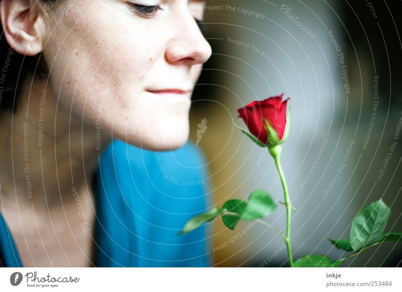 Human being Beautiful Red Adults Face Feminine Life Emotions Happy Moody Elegant Birthday Rose Romance Smiling Blossoming
