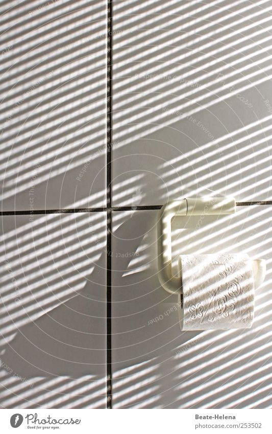 streaks of light Lifestyle Bathroom Wall (barrier) Wall (building) Toilet paper Stripe Esthetic Exceptional Bright Uniqueness White Happiness Pure Quality