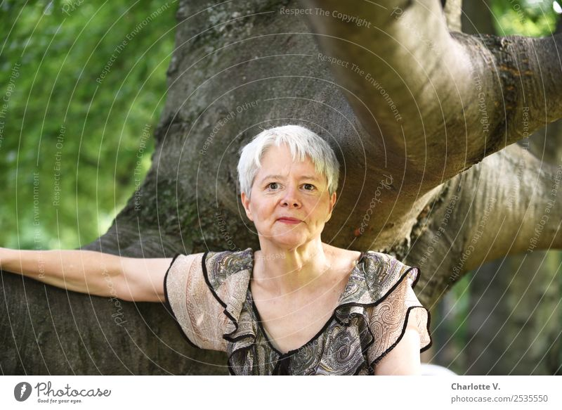 Woman Human being Nature Beautiful Green Tree Relaxation Adults Wood Natural Feminine Brown Contentment Free Elegant Smiling
