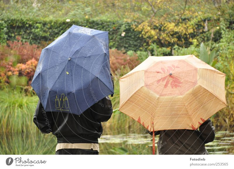 Dented ego Couple Partner 2 Human being Water Autumn Rain Garden Umbrella Together Broken Wet Blue Brown Green To cede give in Individual space Stress