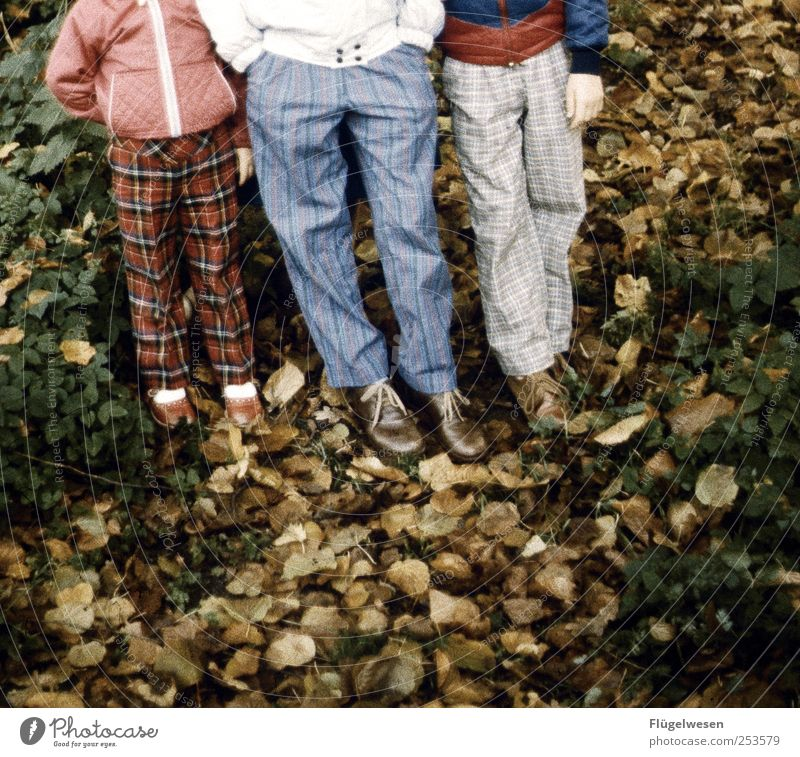 Human being Child Vacation & Travel Tree Leaf Relaxation Autumn Legs Friendship Contentment Tourism Trip Happiness Pants Jacket Joie de vivre (Vitality)