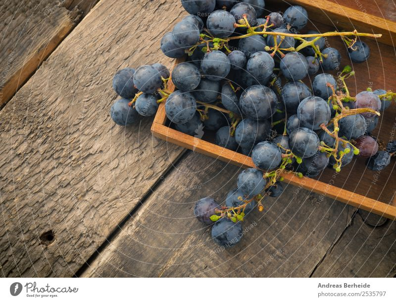 Grapes in a wooden box Fruit Dessert Organic produce Vegetarian diet Diet Healthy Eating Summer Nature Delicious agriculture berry blue branch bunch food