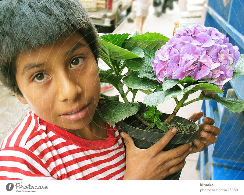 Do you want flowers? Flower Child Portrait photograph Mexico boy street.