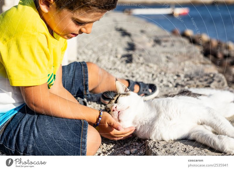Adorable little boy caressing a cat on the street Cat Child Human being Nature Summer Beautiful Hand Ocean Relaxation Animal Joy Lifestyle Love Emotions Coast